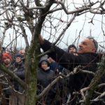 Prove pratiche di potatura  a Cesena