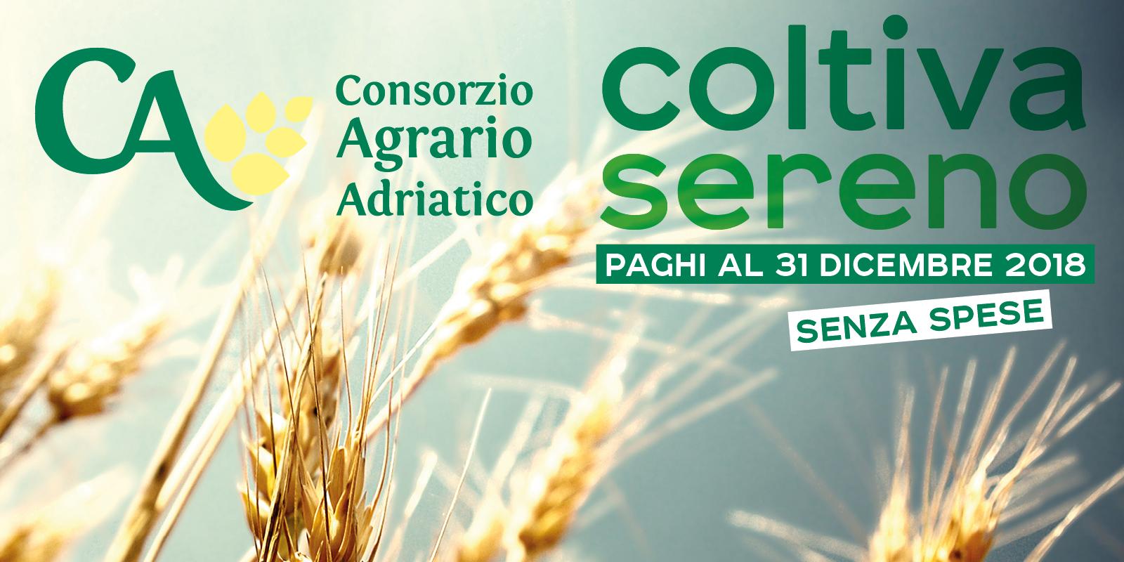CONS AGR-BANNER 1600X800-SERENO