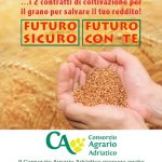 Contratti Semine Cereali 2016